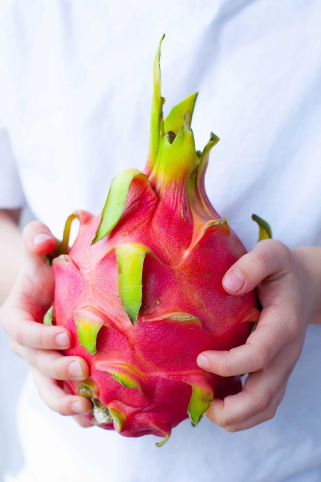 EnMalayalam_Dragon fruit-wzR1PFDsg7.jpg