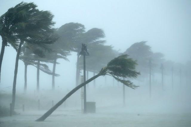 cyclone-5-6lZy8RDNIl.jpg