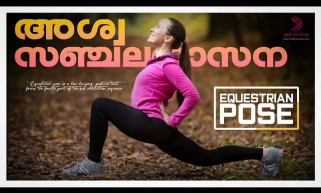 equestrian pose-YyDdr2xTf9.jpeg